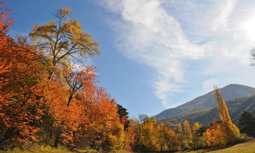 couleur_d_automne_dans_l_embrunnais