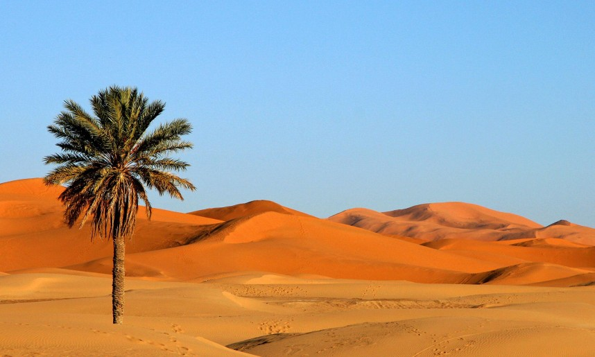 maroc_l_erg_chebbi_grand_sud1