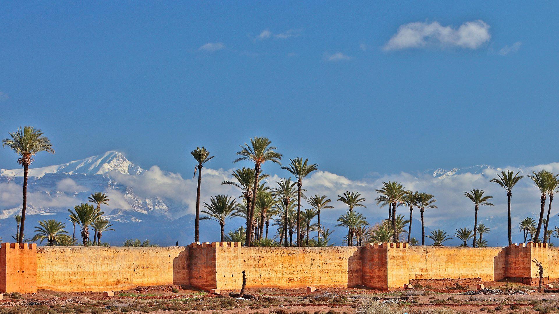 les remparts de marrakech sur un fond de ciel bleu avec des palmiers et les montagnes du haut atlas enneiges